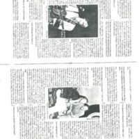 http://history.caffelena.org/transfer/Performer_File_Scans/chapin_tom/Chapin__Tom___Interview___Sing_Out_Maazine___1988.pdf